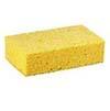 BXRI Sponges