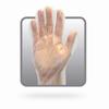AAFP Polyethylene Disposable Gloves