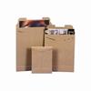 AAIG Kraft PaperboardTab-Lock Mailer